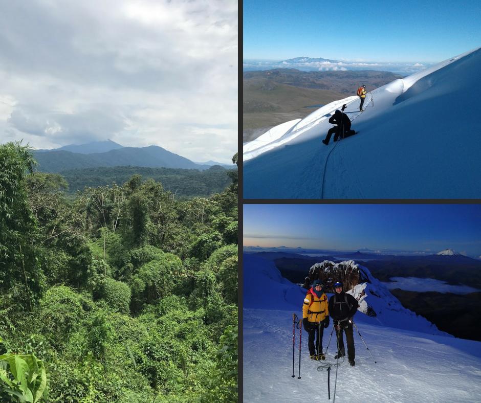 Collage, der viser bjergbestigning og Amazonas junglen